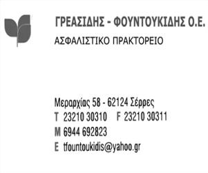 greasidis_300x250.png